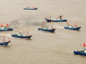 Fiske i Östkinesiska havet