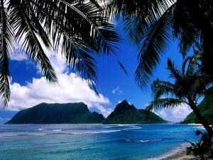 Palmstrand på Amerikanska Samoa