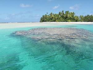 Naturskönt i Tokelau